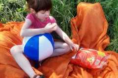 piknik-ps-19