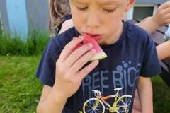 piknik-ps-lato-19