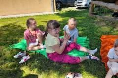 piknik-ps-lato-25
